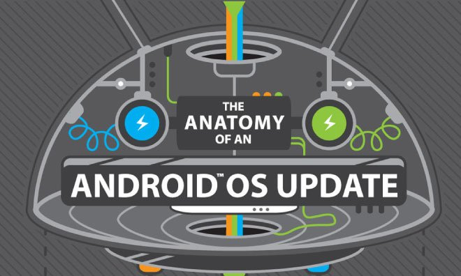 HTC explain US – Why the software updates are launched late [infographic]